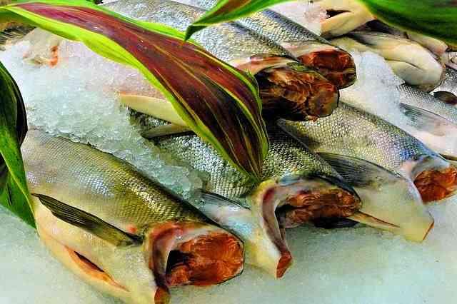relato, productos del mar